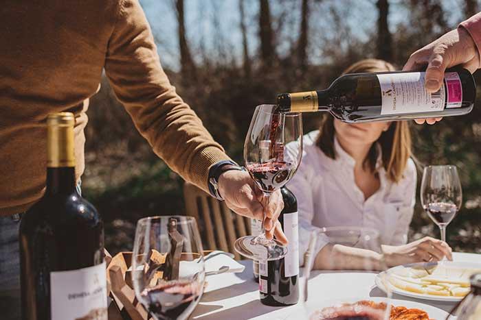 Tren del vino sábado 2 de octubre, Ruta del vino Ribera de Duero 1