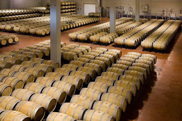 Sábado 19 diciembre, Ruta del vino Ribera de Duero 1